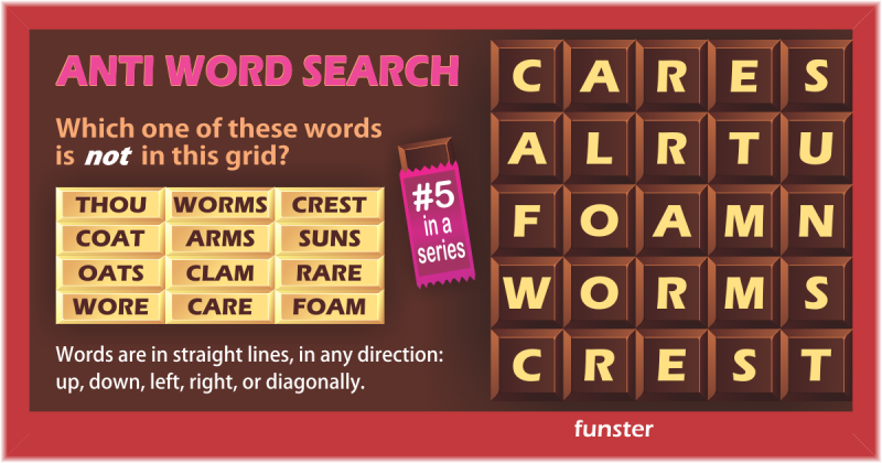 Anti Word Search 05