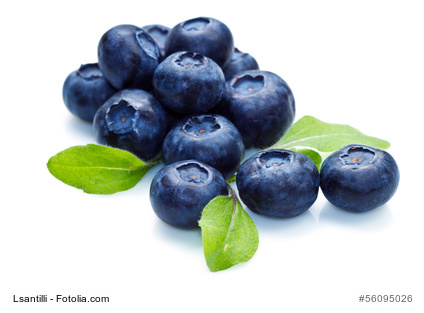 Blueberries: good for your brain!